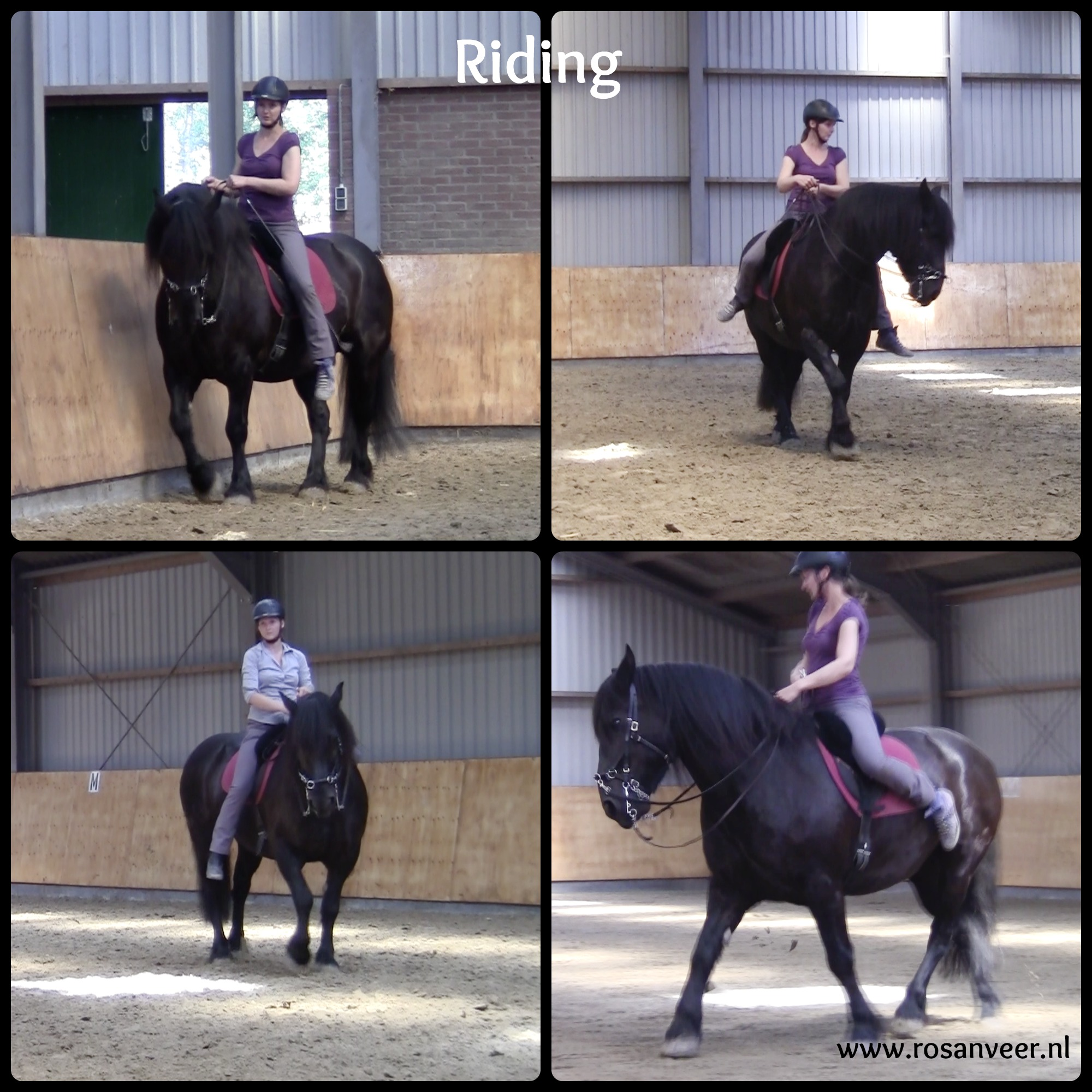 2016-06-sti-clinic-riding-tekst